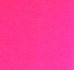 Image result for fuschia