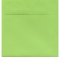 Kaskad Parakeet Green 150mm Sq Envelope