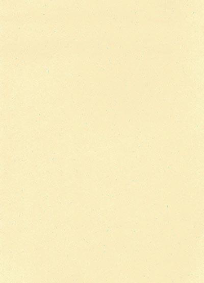 Speckletone Cream (Card) | Amazing Paper